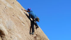 "Rock Climbing Photo: Fighting the bulge on ""Yellow Rose of Texas.&..."