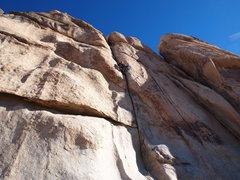 Rock Climbing Photo: Jackson leading