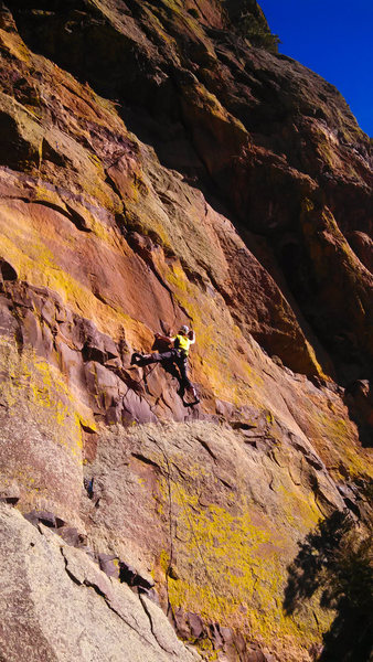 Wild, tenuous moves through the brown band get you the crux entry - marked by a decent crimp.<br> <br> Photo: Steve Levin.