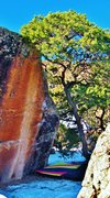Rock Climbing Photo: The Apneic problem on Megalomania Block.