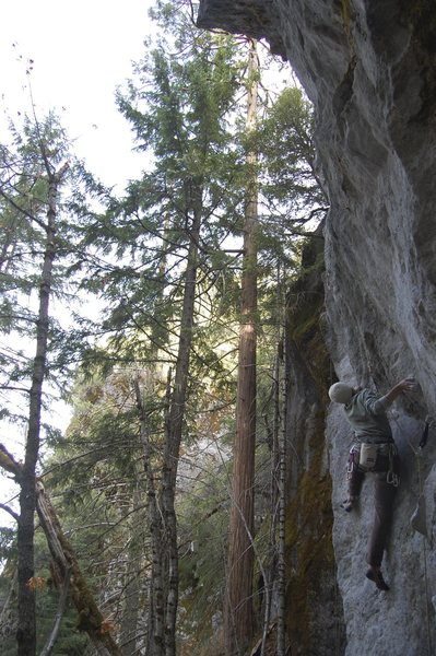 Rock Climbing Photo: nimby 5.11