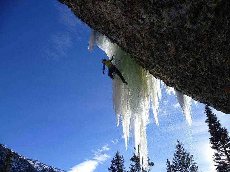 Rock Climbing Photo: Steph Mareau on Inglorious Bastards