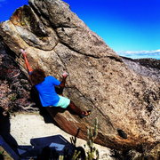 Rock Climbing Photo: John Daniels on the crux of Prickly Pear!