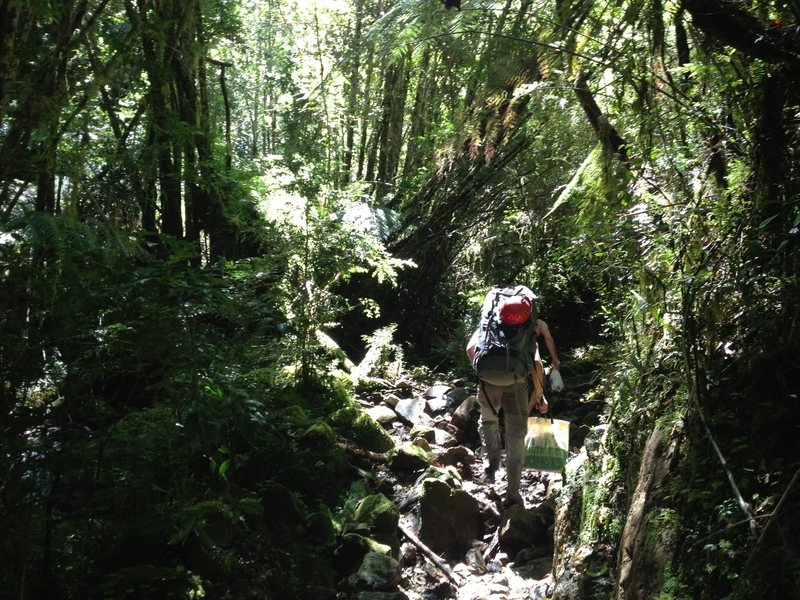 Rock Climbing Photo: hiking into la junta- Jan 2013