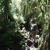 hiking into la junta- Jan 2013