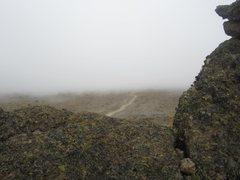 Rock Climbing Photo: last couple! lol