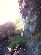 Rock Climbing Photo: Scary line, but by far the best at Luffenholtz
