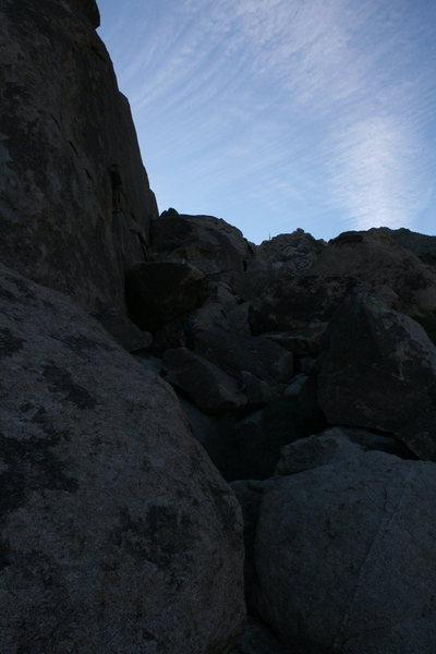 Rock Climbing Photo: Guniea pig