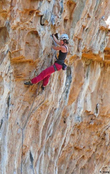 Alison Fritz cruises into the crux<br> Couples Fear Factor (5.11)