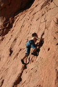 Rock Climbing Photo: forest on cowboy boot crack
