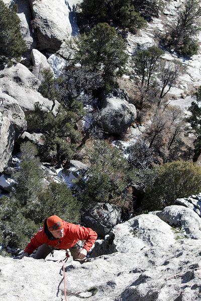 Alpinista Sista