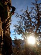 Rock Climbing Photo: start of p1
