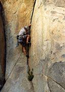 Rock Climbing Photo: Right Banana Crack. Punchy.   Photo: Erica Maharg