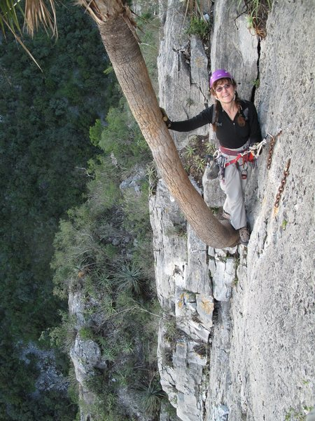 Rappel route. I love palm trees in the middle of steep walls!