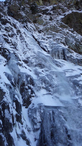 Blue Gulley on 11-22-13