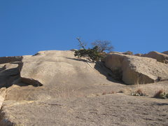 Rock Climbing Photo: From 20' below the base of Tree Route.  5.5 sectio...