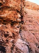 Rock Climbing Photo: Daryl at Mic's Master