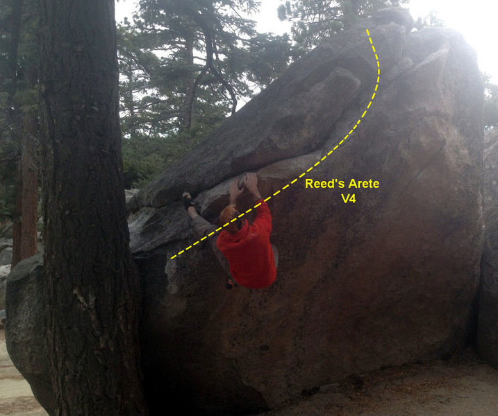 Reed's Arete (v4) The tree is off.