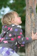 Rock Climbing Photo: Tree dyno gonna happen