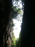 Rock Climbing Photo: Looking out from Daisy's Wall.  See the monkey at ...
