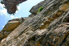 Rock Climbing Photo: Sorum tasting the crimps