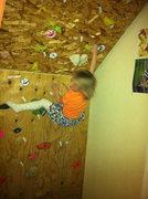 Rock Climbing Photo: home wall
