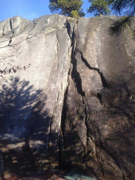 Rock Climbing Photo: Prey