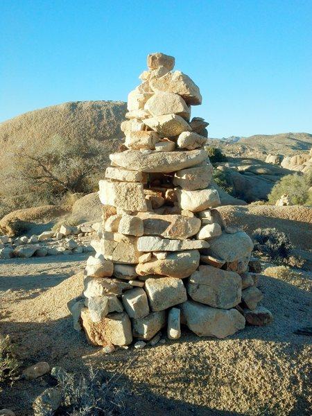 Found behind Jumbo Rocks Campground