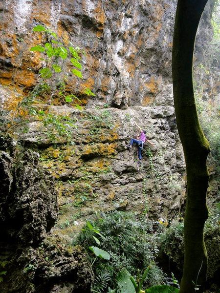 Mr. Wu climbing at Monkey Cave.