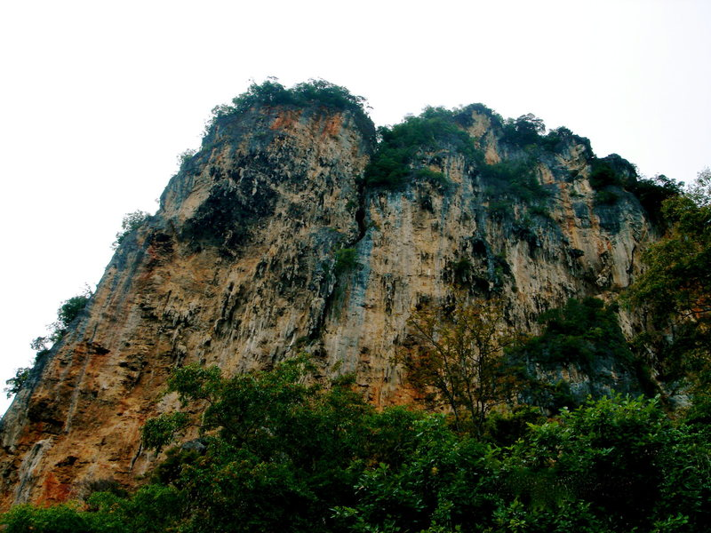 Rock Climbing Photo: BIG TREE WALL