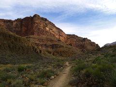 Rock Climbing Photo: N Kaibab again