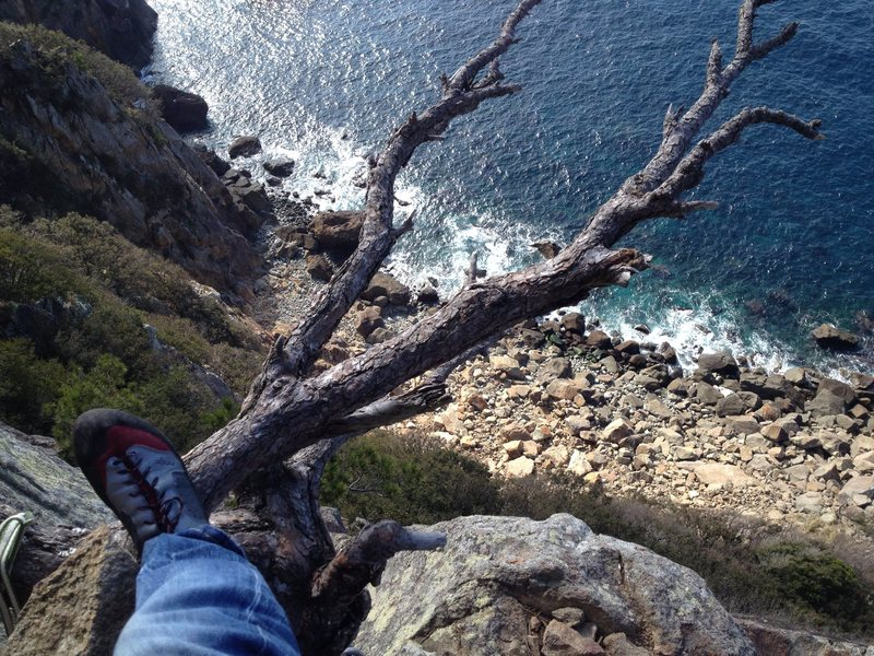 Another tree belay.