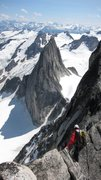 Rock Climbing Photo: Da Bugs