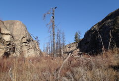 Rock Climbing Photo: Little West Canyon from the south.
