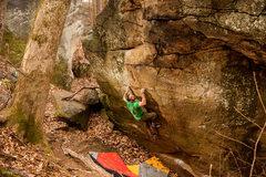 Rock Climbing Photo: Pitt BBQ.  Photo Greg Loomis.