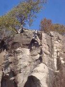 Rock Climbing Photo: Hidden-mite
