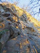 Rock Climbing Photo: Physical Graffiti