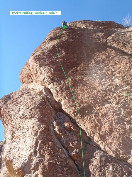 Rock Climbing Photo: Pocket Pulling Pansies (January 2014)