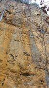 Rock Climbing Photo: Predator 12c.