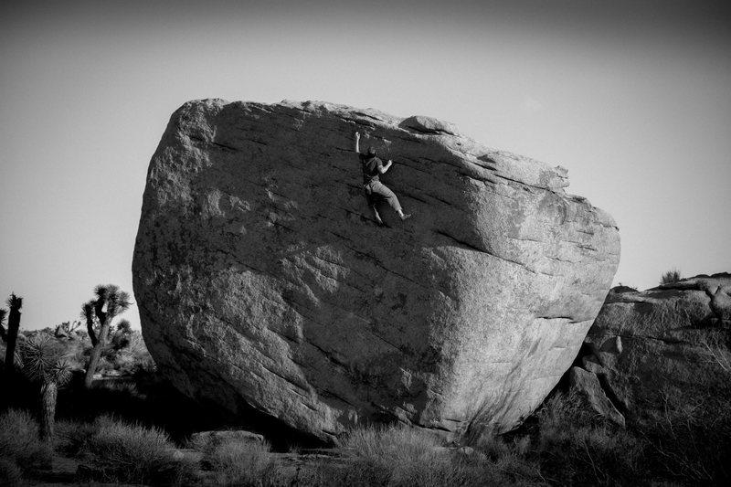 Slashface.  Cross that off the lifetime tick list.  Photo Darin Limvere.