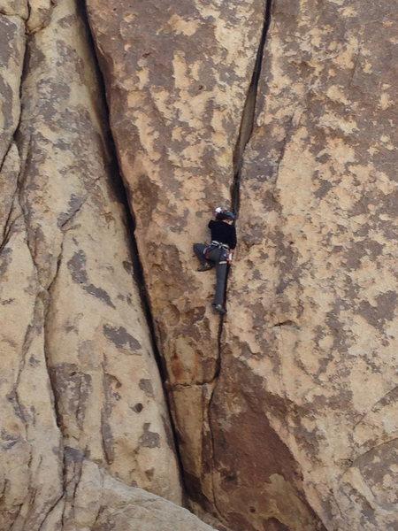 Rock Climbing Photo: climbing some nice crack