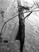 Rock Climbing Photo: Start of East Crack Chimney.