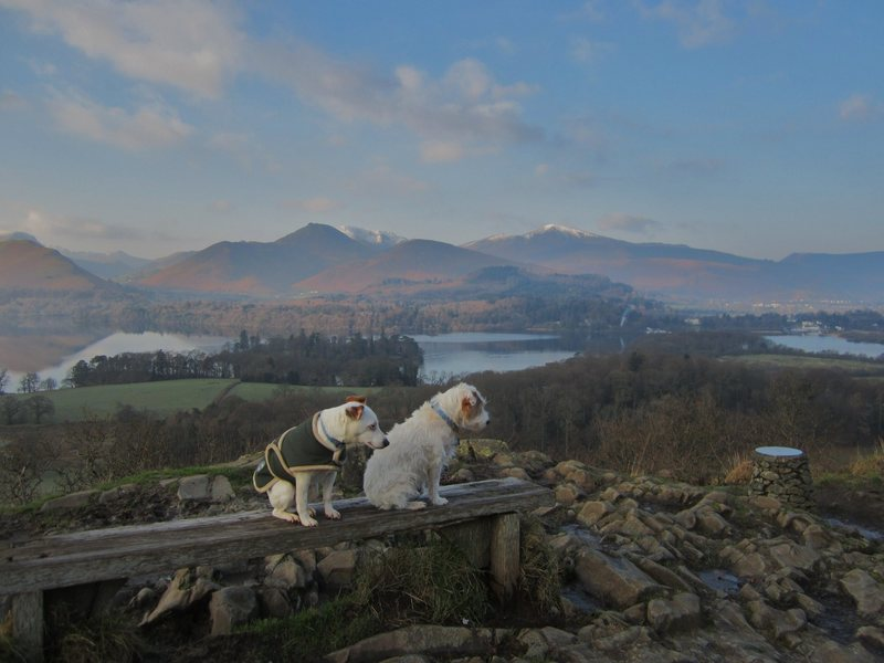 Rock Climbing Photo: Looking over Derwentwater .Lake District . Jan 30t...