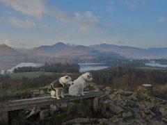 Rock Climbing Photo: Looking over Derwentwater .Lake District . Jan 30t...