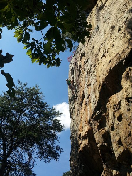 Rock Climbing Photo: Swindled 11a/b Right before the final crux.