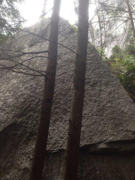 Rock Climbing Photo: end