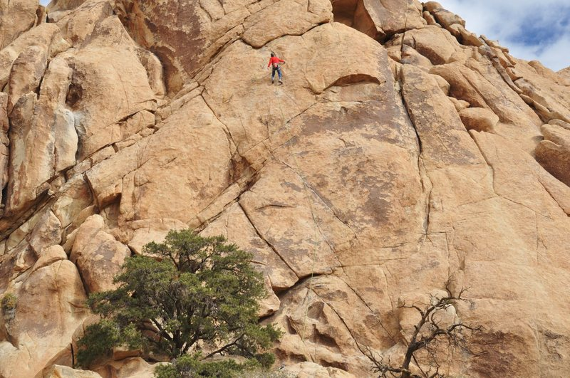 Frank Bentwood leads LA Woman 5.11a ****<br> <br> photo by bob gaines
