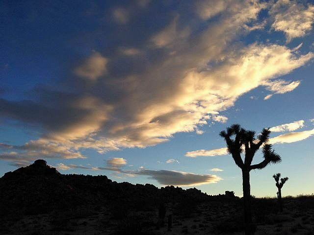 Rock Climbing Photo: High Desert Sunrise, Joshua Tree NP