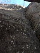 Rock Climbing Photo: Tree Crack, 5.7
