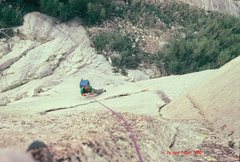 Rock Climbing Photo: Mark Leonard jumars the fixed ropes on summit day.